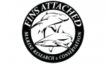 Fins Attached Marine Research & Conservation